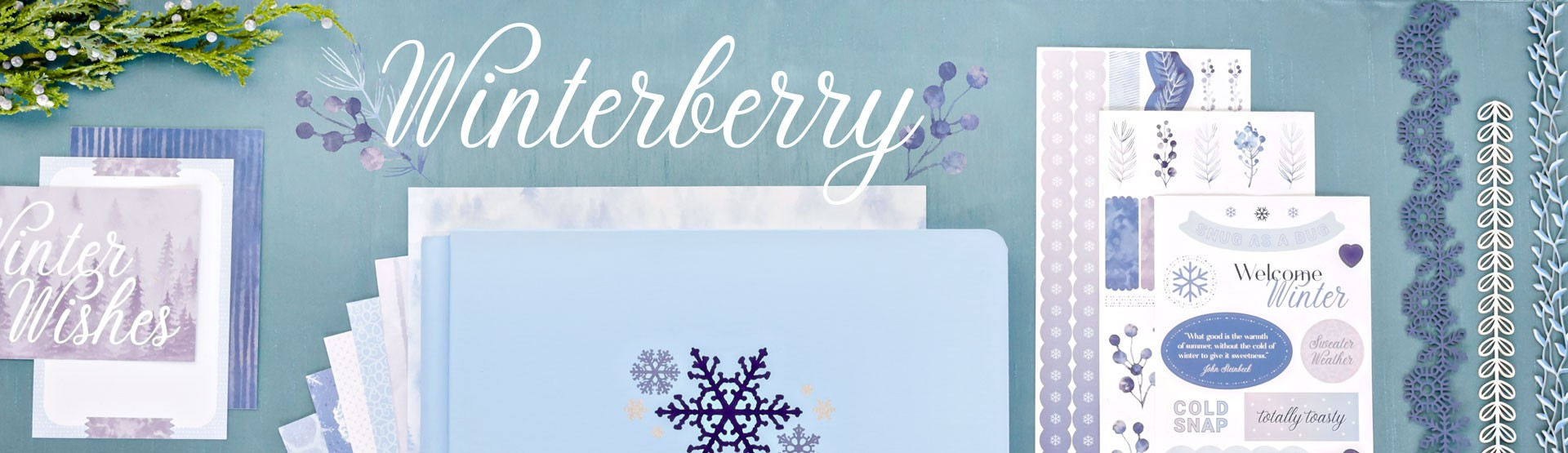 Winter & Cold Weather: Winterberry